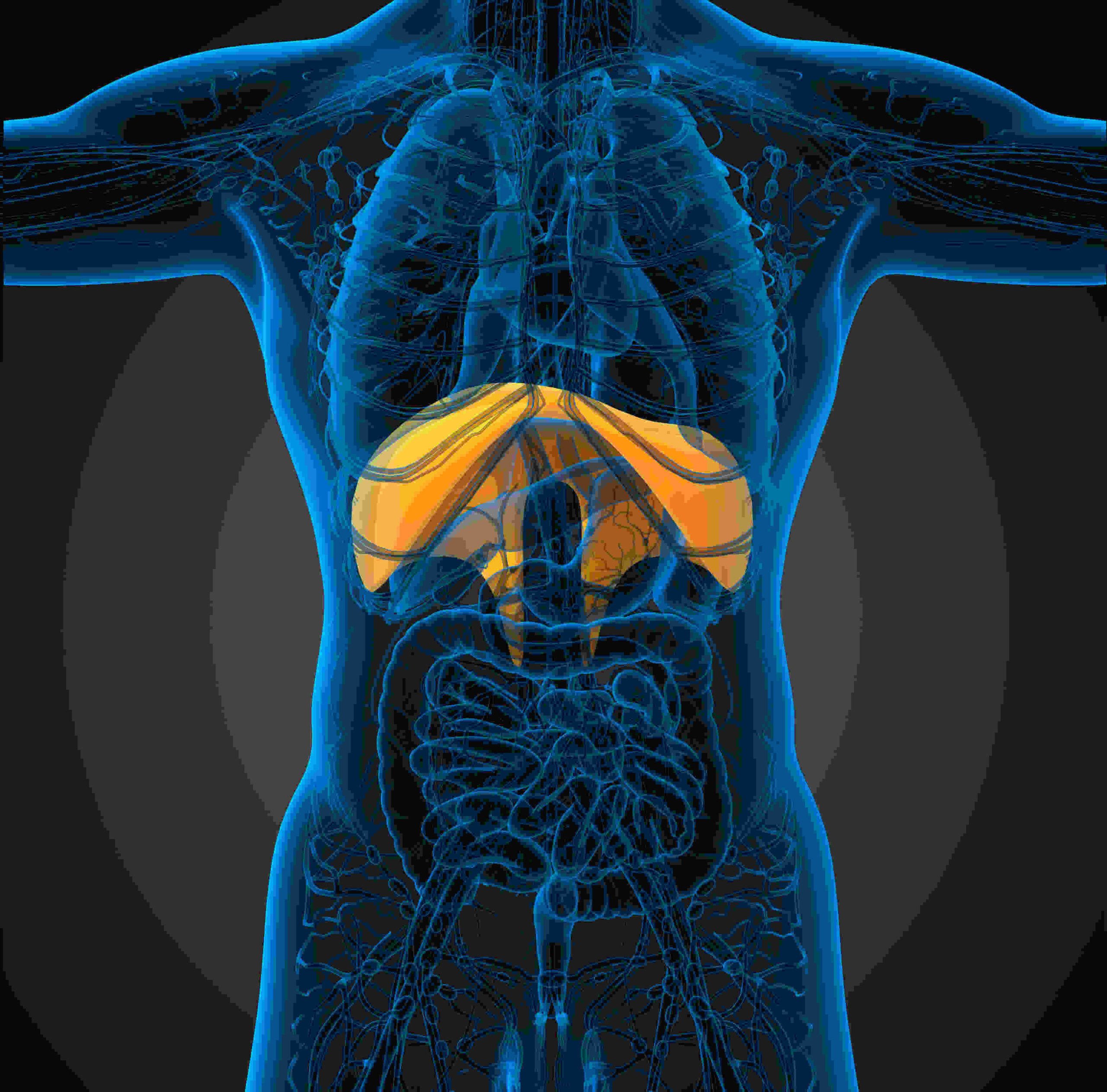 How to keep your Diaphragm fit